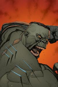Ultimate Wolverine vs. Hulk #3 cover