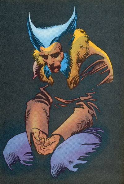 Wolverine Covers: Wolverine #3 Limited Series