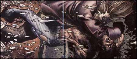 Sabretooth and Logan